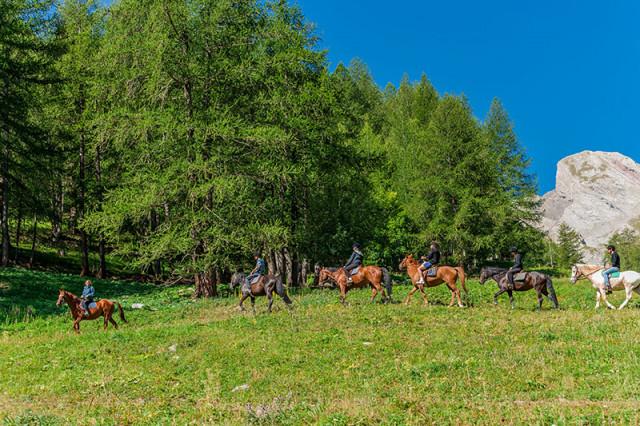 Equitazione, passeggiate con asini